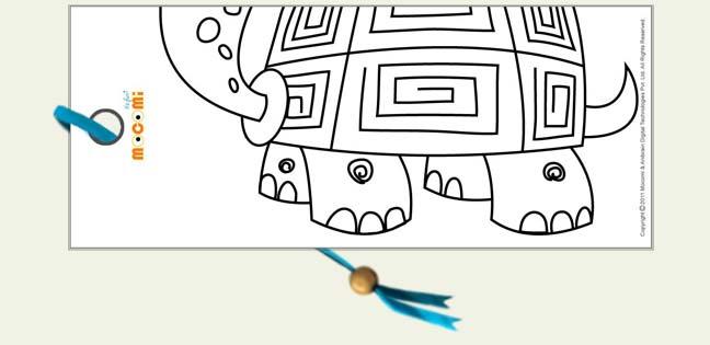 Turtle legs