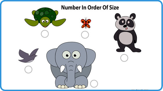 Order and size (I)