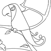 Parrot - Colouring Page