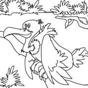 Vulture – Colouring Page