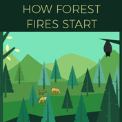 What causes Forest Fires?